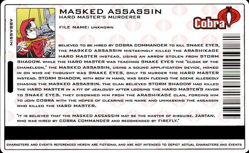 Masked Assassin